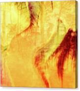 Tulip Dawn-2 Canvas Print