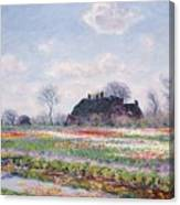 Tulip Fields At Sassenheim Canvas Print