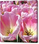Tulip Flowers Garden Art Pink Tulips Baslee Troutman Canvas Print