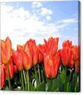 Tulip Town 17 Canvas Print