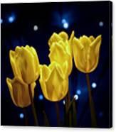 Tulip Twinkle Canvas Print