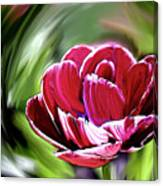Tulip Whirl Canvas Print