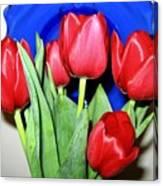 Tulipfest 1 Canvas Print