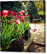Tulips And Bench Canvas Print