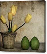 Tulips And Green Pears Canvas Print
