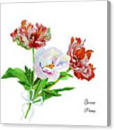 Tulips And Pink White Peony Canvas Print