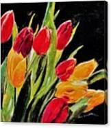 Tulips Colors Canvas Print