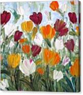 Tulips Garden Canvas Print