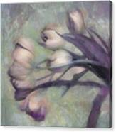 Tulips Going West Canvas Print