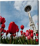 Tulips In Seattle H081 Canvas Print