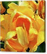 Tulips In Yellow Too Canvas Print
