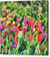 Tulips. Monet Style Digital Painting. Canvas Print