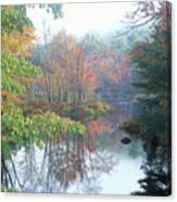Tully River Autumn Canvas Print