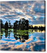 Tumultuous Swamp Canvas Print