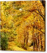Tunnel Of Gold Canvas Print