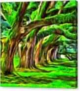 Tunnel Tree Canvas Print