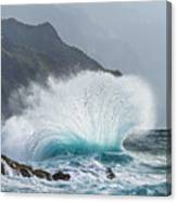 Turbulent Shore Canvas Print