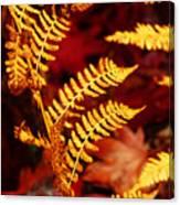 Turning To Autumn Canvas Print