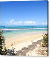 Turquoise Beach Hideaway In Vieques Canvas Print