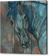 Turquoise Horse Canvas Print