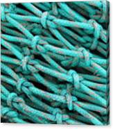 Turquoise Nets Canvas Print