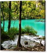Turquoise Waters Of Milanovac Lake Canvas Print