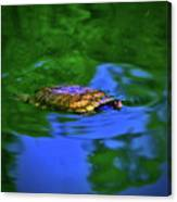 Turtle Coming Up For Air 003 Canvas Print