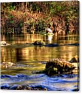 Turtle Creek Canvas Print