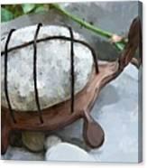 Turtle Full Of Rocks Canvas Print
