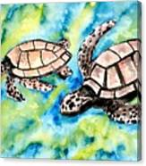 Turtle Love Pair Of Sea Turtles Canvas Print