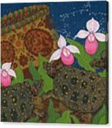 Turtle - Mihkinahk Canvas Print