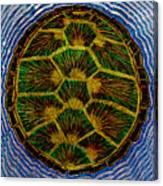 Turtle Shell Mandala Sparkle Canvas Print