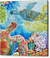 Turtle Territory Canvas Print