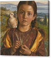 Tuscan Girl Plaiting Straw Canvas Print