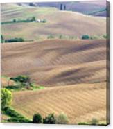Tuscan Landscape With Plowed Fields Canvas Print