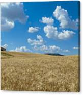 Tuscany Landscape With The Town Of Pienza, Val D'orcia, Italy Canvas Print