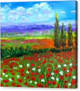 Tuscany Poppies Field Canvas Print