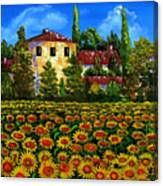 Tuscany Sunflowers Field Canvas Print
