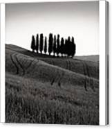 Tuscany Triptych Canvas Print
