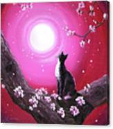 Tuxedo Cat In Cherry Blossoms Canvas Print