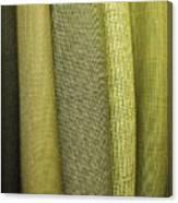 Tweeds Canvas Print