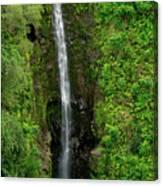 Twelve Falls Canvas Print