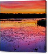 Twilight Afterglow #1 Canvas Print