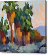 Twilight At Indian Canyons  Canvas Print