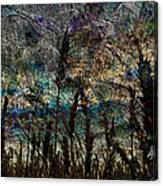 Twilight Grain Canvas Print