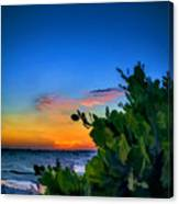Twilight Mangrove Canvas Print