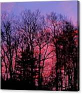Twilight Trees Canvas Print