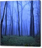 Twilight Woods Canvas Print