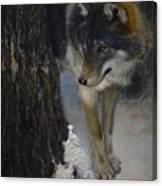 Twilight's Preyer  Canvas Print
