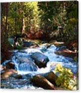 Twin Bridges Cascades Canvas Print